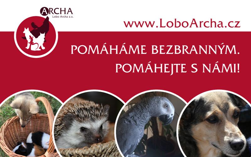 Lobo Archa z. s.